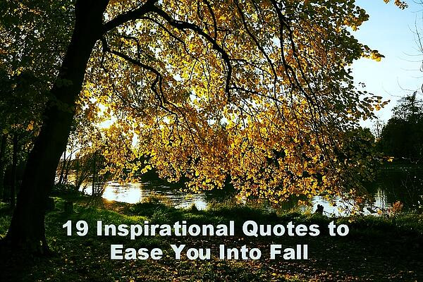 19QuotesFall-420713-edited.jpg